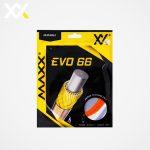 store_evo66_img